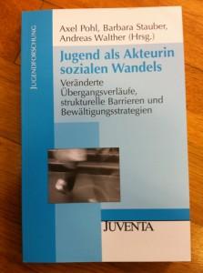 Buchdeckel Pohl-Stauber-Walther 2011